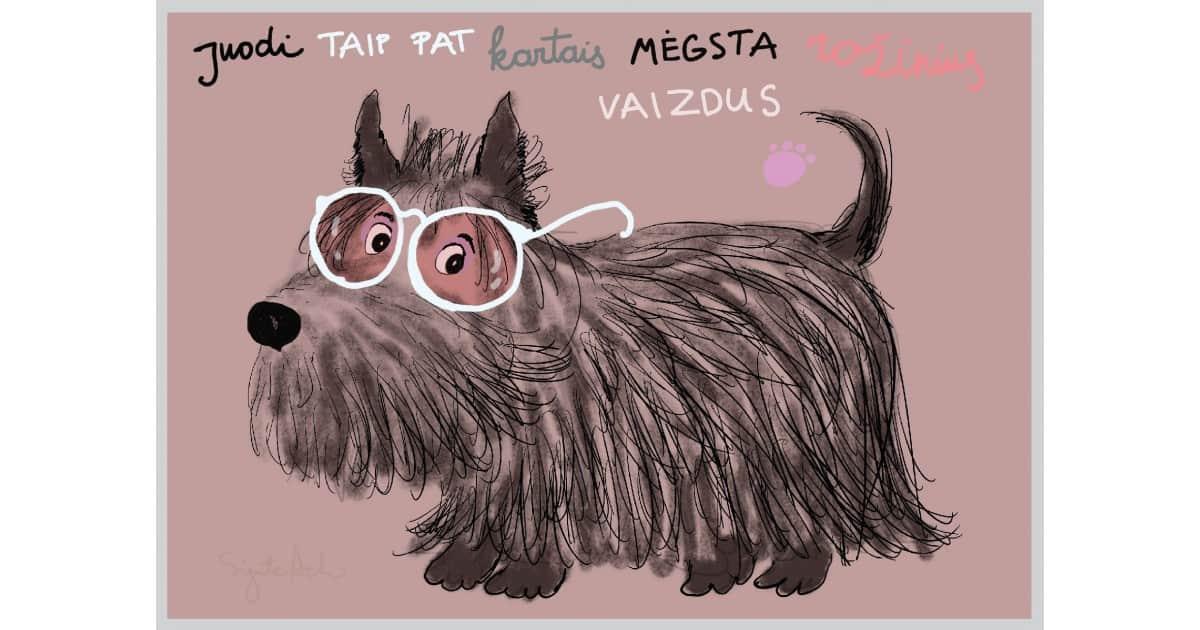 AMV236 Pro rožinius akinius